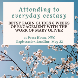 Attending to everyday ecstasy. Betsy Fagin guides 6 weeks of engagement with the work of Mary Oliver at Poets House, NYC. Registration deadline May 22nd.