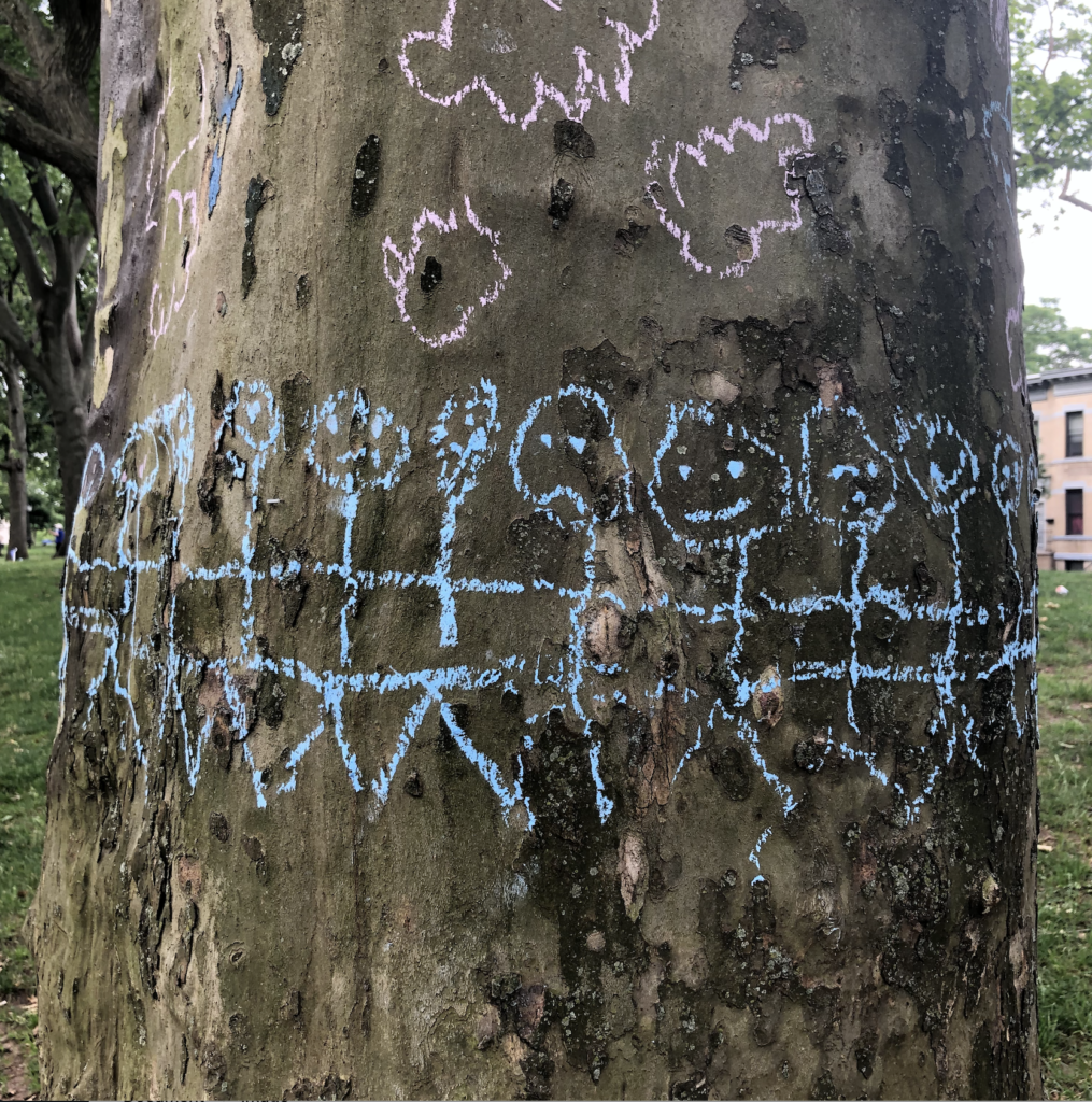 Stick figures with interlinking arms drawn in chalk around the trunk of an old plane tree